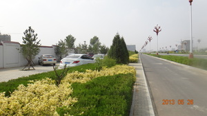 榆林高新区绿化N5标段